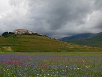 Castelluccio di Norcia (PG)