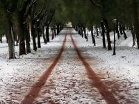 Inverno #1